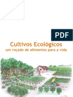 Cultivos Ecologicos - um roçado de alimentos para a vida