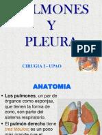 Pulmones y Pleura - Cirugia i