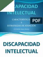 DISCAPACIDADINTELECTUALCARACTERISTICASYESTRATEGIASDEATENCIN