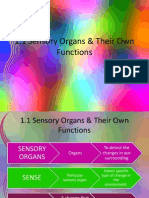 1.1 Sensory Organs Their Own Functions 3.1 Sensory Organs Their Own Functions