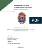 Informe Fina de Climatologia 2012 Quemar