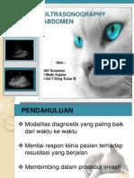 59013082 Jurnal USG Radiologi