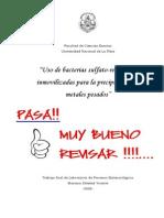 TESIS Uso de BSR Inmovilizadas Para Precipitar Metales Pesados MUY BIEN!!!