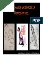 Demodex Spp Mayo 2013