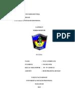 SAMPUL MIKROMERITIK.docx
