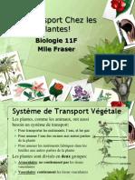 Bio11F - Notes sur les Systèmes de Transport – Les Plantes
