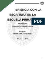 ensayo de la practica español
