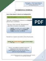 Concordancia Nominal Gravacao Material[2]