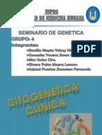 1 SEMINARIO GENETICA (1)