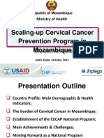 Scaling-up Cervical Cancer Prevention Program in Mozambique Powerpoint