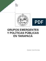 GRUPOS EMERGENTES Y POLÍTICAS PÚBLICAS EN TARAPACÁ