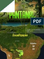 Bioma do Pantanal.pptx