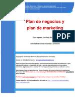 A-18 Plan de Negocios y Plan de Marketing