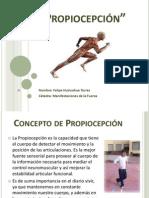 Propiocepción Completa.pptx