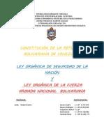 Trabajo Defensa Integral 05.10.2013