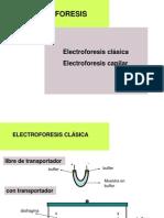 2011 Electroforesis capilar