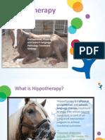 hippo presentation for otac