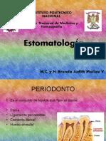 Parodonto o Periodonto