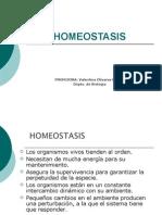 HOMEOSTASIS introducción