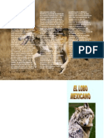 Triptico Lobo Mexicano