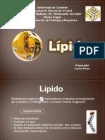 5 - Lipidos