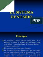 elsistemadentario1-120517192456-phpapp02(2)
