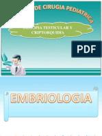 DISTOPIA TESTICULAR Y CRIPTORQUIDEA sn.ppt