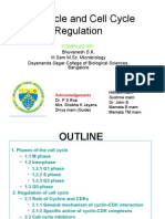 The Cell Cycle & Cell Cycle Regulation by bhuvanesh kalal