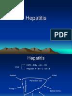 102455840-Hepatitis