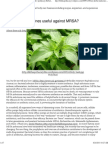 (Are herbal medicines useful againstMRSA_ _ Lilith's Apothecary Herbal Body Care)