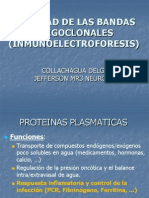proteinograma-110328053940-phpapp01