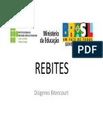2 - REBITES