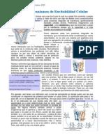 04_2 Excitabilidad II (Mecanismos de Excitabilidad Celular)
