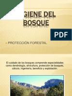 Higiene Del Bosque