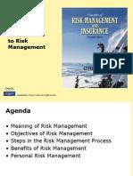 Risk Management Ppt
