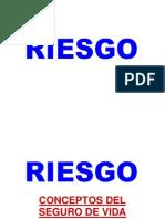 Riesgo Asesores 2010 - Juan Antonio Pinto