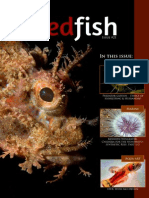 Redfish Magazine Issue 21 Eu