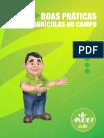 Andef Manual Boas Praticas Agricolas Web 081013192330