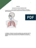 Guia 8 Terapia General Ida Des de Aparato Respiratorio