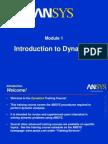 Dynamics 70 M1 Intro