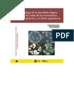 Ecologia Microbiota Baja Tcm7-132018