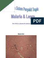 Present. Praktikum Sis. Peny. Tropis (Lepra