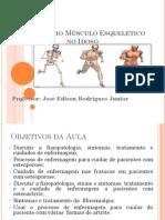 o Aparelho Musculo Esqueletico No Idoso