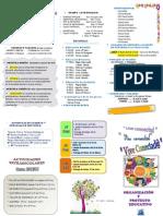 Folleto organizativo 2013