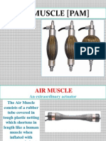 Air Muscle Presentation