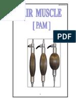 Air Muscle