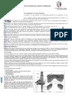 4020540 El Petroleo Origen y Composicion