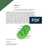 Diálisis en bioquímica