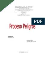 Proceso Peligroso (Aguilera Elianny)