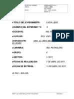 Info Fis-100 (Caída Libre).doc
